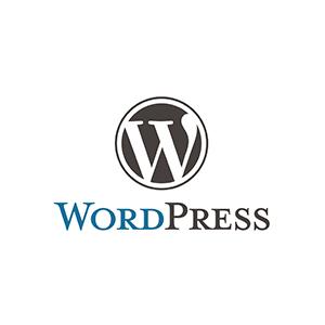 Wordpress - Youneek Media Group